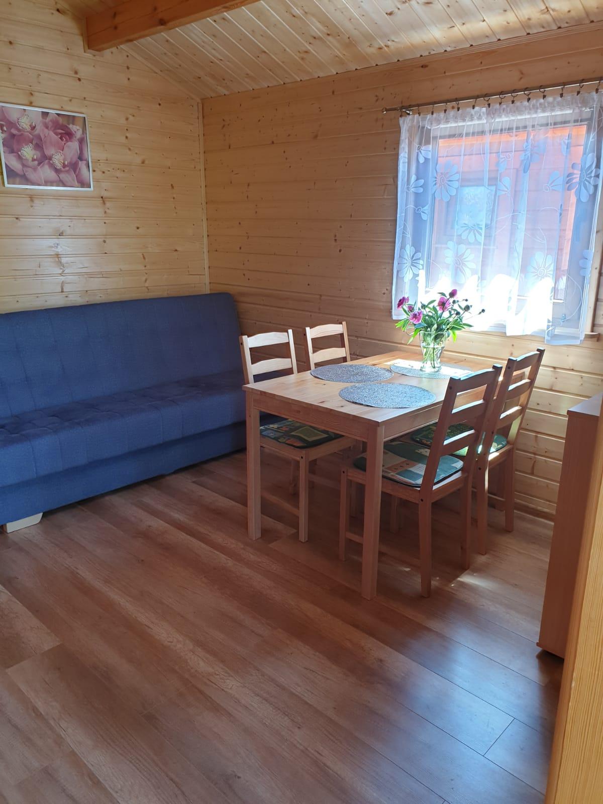 Salon w domku w Wiciu