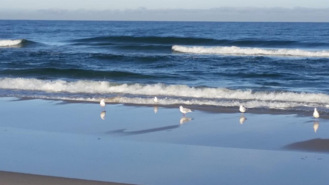 Morze Bałtyckie w Wiciu
