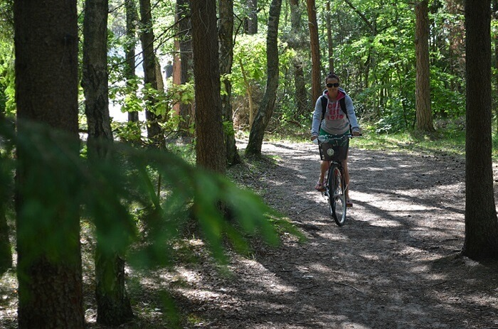 Ścieżka rowerowa w Wiciu